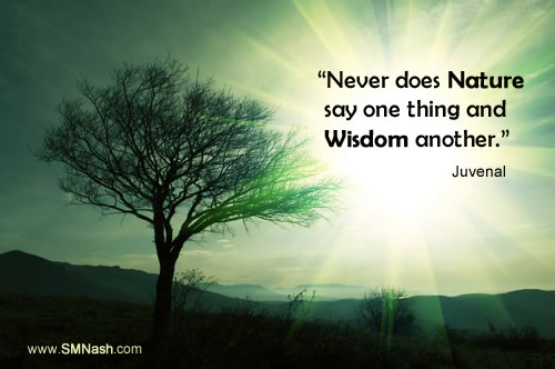 Quote about wisdom and nature by Juvenal | Image of greem tree and green sky