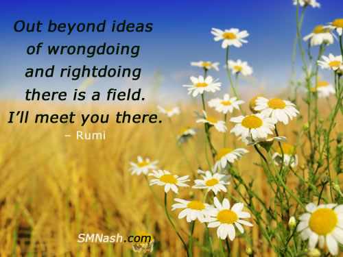 Rumi quote about wrongdoing in field of flowers | spiritual coaching